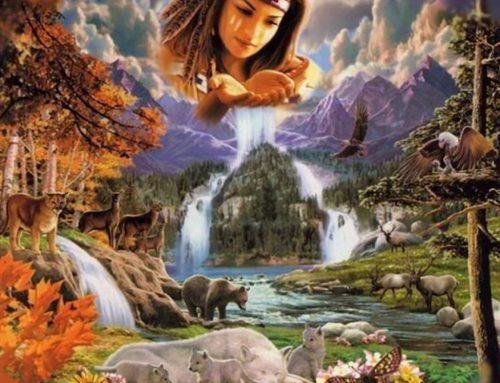 Heile Deine Seele, Deinen Geist und der Körper wird folgen!